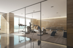 summitridge-gym-02